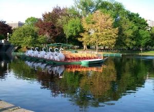 Le Swan Boat